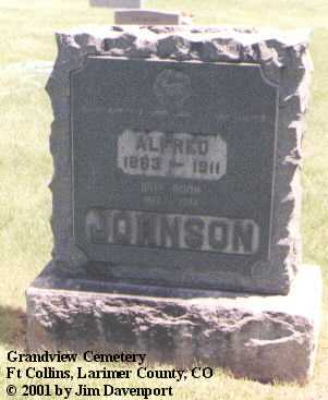 JOHNSON, ANNA - Larimer County, Colorado | ANNA JOHNSON - Colorado Gravestone Photos