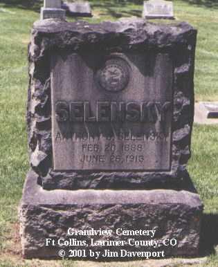 SELENSKY, ANTHONY J. - Larimer County, Colorado   ANTHONY J. SELENSKY - Colorado Gravestone Photos