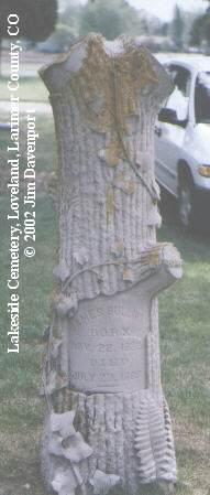 SULLIVAN, JAMES - Larimer County, Colorado | JAMES SULLIVAN - Colorado Gravestone Photos