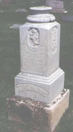 THOMAS, IRVING N. - Larimer County, Colorado | IRVING N. THOMAS - Colorado Gravestone Photos