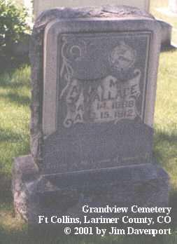 WALLACE, ANNA M. - Larimer County, Colorado | ANNA M. WALLACE - Colorado Gravestone Photos
