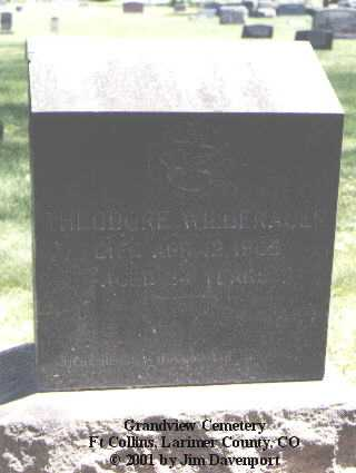 WILDENAUER, THEODORE - Larimer County, Colorado | THEODORE WILDENAUER - Colorado Gravestone Photos