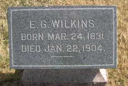 WILKINS, E.G. - Larimer County, Colorado | E.G. WILKINS - Colorado Gravestone Photos
