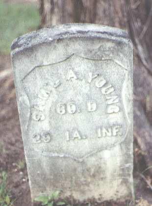 YOUNG, SAM'L A. - Larimer County, Colorado | SAM'L A. YOUNG - Colorado Gravestone Photos