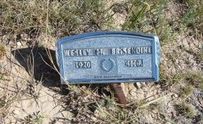 BRISENDINE, WESLEY M - Las Animas County, Colorado | WESLEY M BRISENDINE - Colorado Gravestone Photos