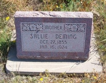 DEMING, SALLIE - Las Animas County, Colorado | SALLIE DEMING - Colorado Gravestone Photos