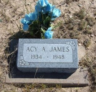 JAMES, ACY A - Las Animas County, Colorado | ACY A JAMES - Colorado Gravestone Photos