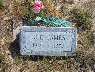 JAMES, SUE - Las Animas County, Colorado | SUE JAMES - Colorado Gravestone Photos
