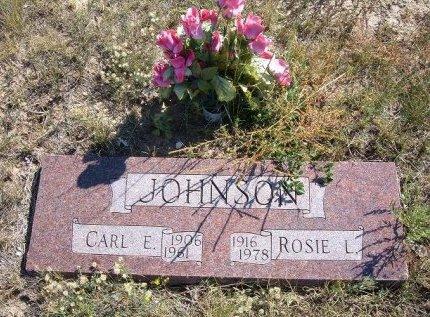 JOHNSON, CARL E - Las Animas County, Colorado | CARL E JOHNSON - Colorado Gravestone Photos