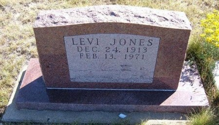 JONES, LEVI - Las Animas County, Colorado | LEVI JONES - Colorado Gravestone Photos