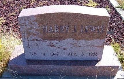 LEWIS, HARRY J - Las Animas County, Colorado   HARRY J LEWIS - Colorado Gravestone Photos