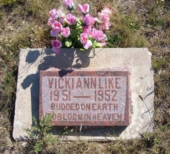 LIKE, VICKIE ANN - Las Animas County, Colorado | VICKIE ANN LIKE - Colorado Gravestone Photos