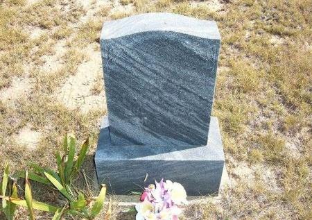 THOMPSON, GUY H - Las Animas County, Colorado | GUY H THOMPSON - Colorado Gravestone Photos