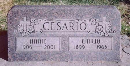CHIODO CESARIO, ANGELINA - Mesa County, Colorado | ANGELINA CHIODO CESARIO - Colorado Gravestone Photos