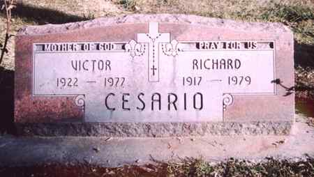 CESARIO, RICHARD - Mesa County, Colorado | RICHARD CESARIO - Colorado Gravestone Photos