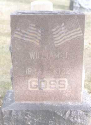 GOSS, WILLIAM J. - Mesa County, Colorado | WILLIAM J. GOSS - Colorado Gravestone Photos