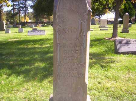 RICE, DAVID H. - Mesa County, Colorado | DAVID H. RICE - Colorado Gravestone Photos