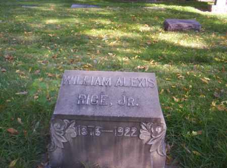 RICE, WILLIAM ALEXIS JR. - Mesa County, Colorado   WILLIAM ALEXIS JR. RICE - Colorado Gravestone Photos