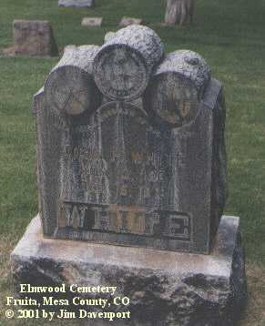 WHITE, JOHN P. - Mesa County, Colorado | JOHN P. WHITE - Colorado Gravestone Photos