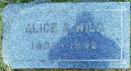 HINDS WILD, ALICE S. - Mesa County, Colorado | ALICE S. HINDS WILD - Colorado Gravestone Photos
