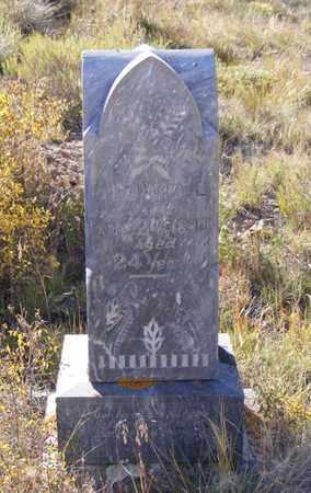 DOWELL, ARCHIE - Mineral County, Colorado | ARCHIE DOWELL - Colorado Gravestone Photos