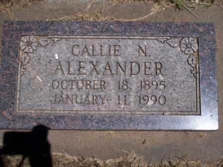 ALEXANDER, CALLIE N. - Montezuma County, Colorado | CALLIE N. ALEXANDER - Colorado Gravestone Photos