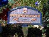 ALEXANDER, JACE JUSTIN - Montezuma County, Colorado   JACE JUSTIN ALEXANDER - Colorado Gravestone Photos