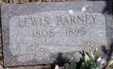 BARNEY, LEWIS - Montezuma County, Colorado   LEWIS BARNEY - Colorado Gravestone Photos