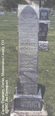 BENSON, HARVEY - Montezuma County, Colorado | HARVEY BENSON - Colorado Gravestone Photos