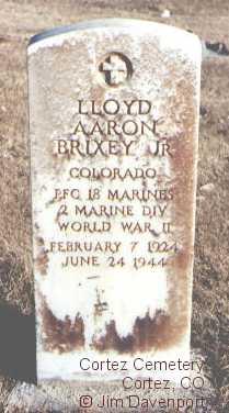 BRIXEY, LLOYD AARON, JR. - Montezuma County, Colorado | LLOYD AARON, JR. BRIXEY - Colorado Gravestone Photos