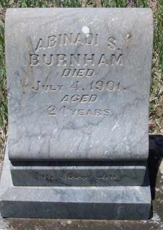 BURNHAM, ABINADI S - Montezuma County, Colorado | ABINADI S BURNHAM - Colorado Gravestone Photos