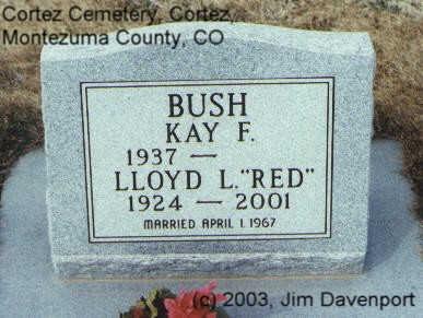 BUSH, LLOYD L. - Montezuma County, Colorado | LLOYD L. BUSH - Colorado Gravestone Photos