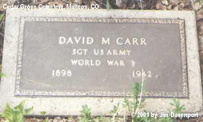 CARR, DAVID M. - Montezuma County, Colorado | DAVID M. CARR - Colorado Gravestone Photos