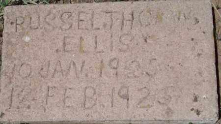ELLLIS, RUSSEL THOMAS - Montezuma County, Colorado | RUSSEL THOMAS ELLLIS - Colorado Gravestone Photos