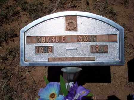 GOFF, CHARLIE - Montezuma County, Colorado | CHARLIE GOFF - Colorado Gravestone Photos