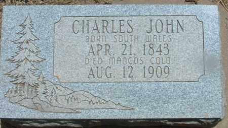 JOHN, CHARLES - Montezuma County, Colorado | CHARLES JOHN - Colorado Gravestone Photos