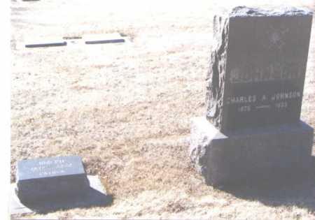 JOHNSON, CHARLES A. - Montezuma County, Colorado | CHARLES A. JOHNSON - Colorado Gravestone Photos