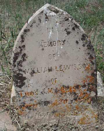 LEWIS, WILLIAM - Montezuma County, Colorado | WILLIAM LEWIS - Colorado Gravestone Photos