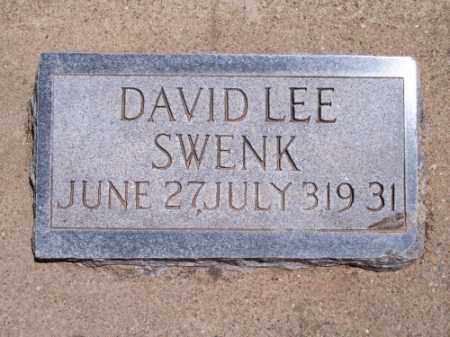 SWENK, DAVID LEE - Montezuma County, Colorado   DAVID LEE SWENK - Colorado Gravestone Photos