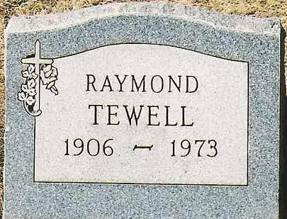 TEWELL, RAYMOND - Montezuma County, Colorado | RAYMOND TEWELL - Colorado Gravestone Photos
