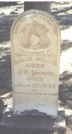 WILLIS, DAVID - Montezuma County, Colorado | DAVID WILLIS - Colorado Gravestone Photos