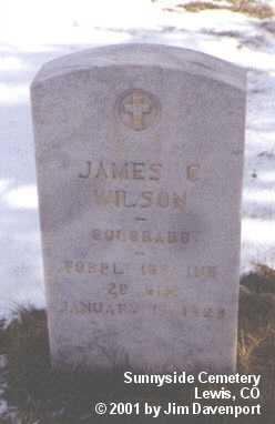 WILSON, JAMES C. - Montezuma County, Colorado | JAMES C. WILSON - Colorado Gravestone Photos