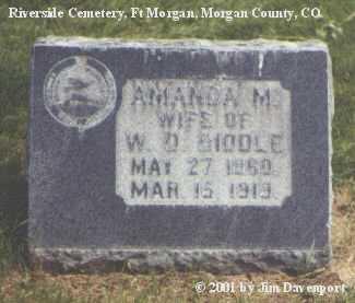 BIDDLE, AMANDA M. - Morgan County, Colorado | AMANDA M. BIDDLE - Colorado Gravestone Photos