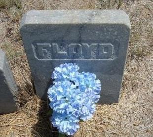 JENKINS, FLOYD B - Otero County, Colorado | FLOYD B JENKINS - Colorado Gravestone Photos