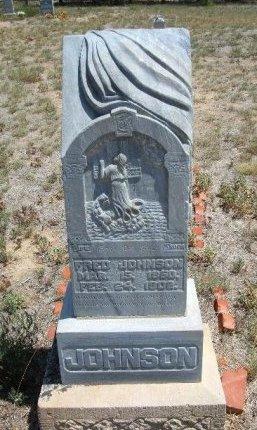 JOHNSON, FRED - Otero County, Colorado | FRED JOHNSON - Colorado Gravestone Photos