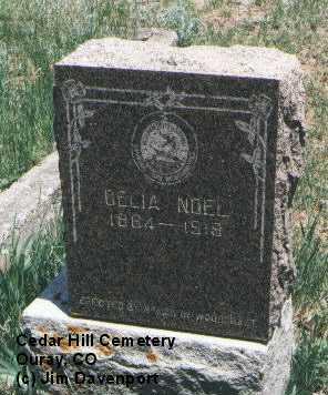 NOEL, DELIA - Ouray County, Colorado | DELIA NOEL - Colorado Gravestone Photos