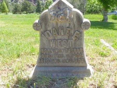 WEST, DANE E - Ouray County, Colorado | DANE E WEST - Colorado Gravestone Photos