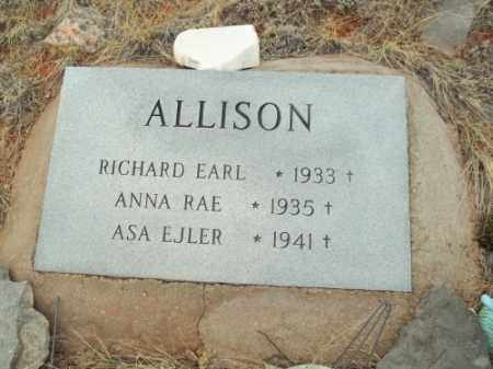 ALLISON, RICHARD EARL - Park County, Colorado | RICHARD EARL ALLISON - Colorado Gravestone Photos