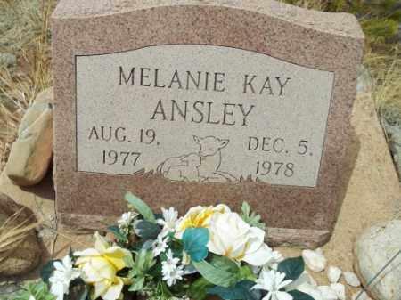 ANSLEY, MELANIE KAY - Park County, Colorado | MELANIE KAY ANSLEY - Colorado Gravestone Photos