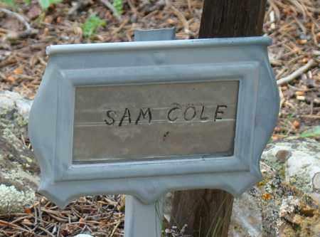 COLE, SAMUEL E. - Park County, Colorado | SAMUEL E. COLE - Colorado Gravestone Photos